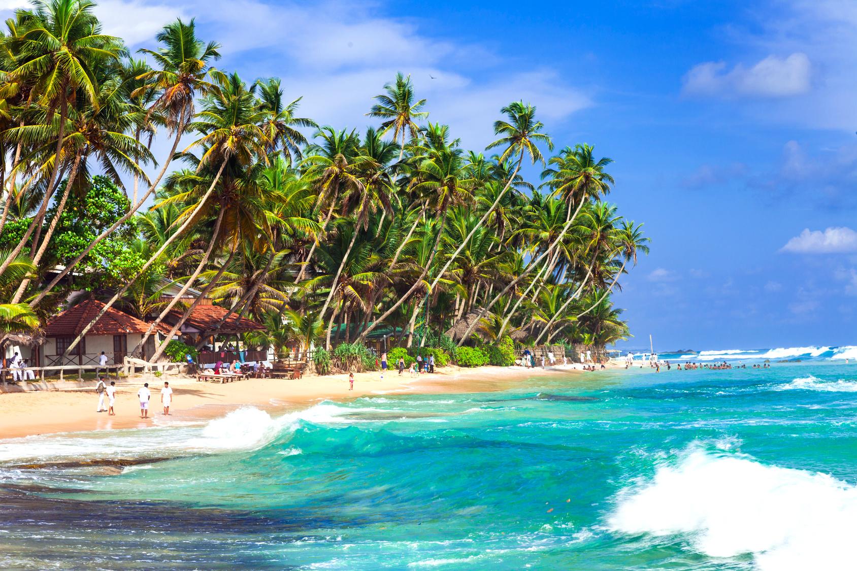Tropikalna Plaża Sri Lanki